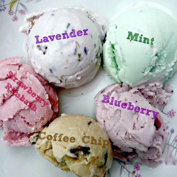 This is just a small assortment of our 18 ice cream flavors!