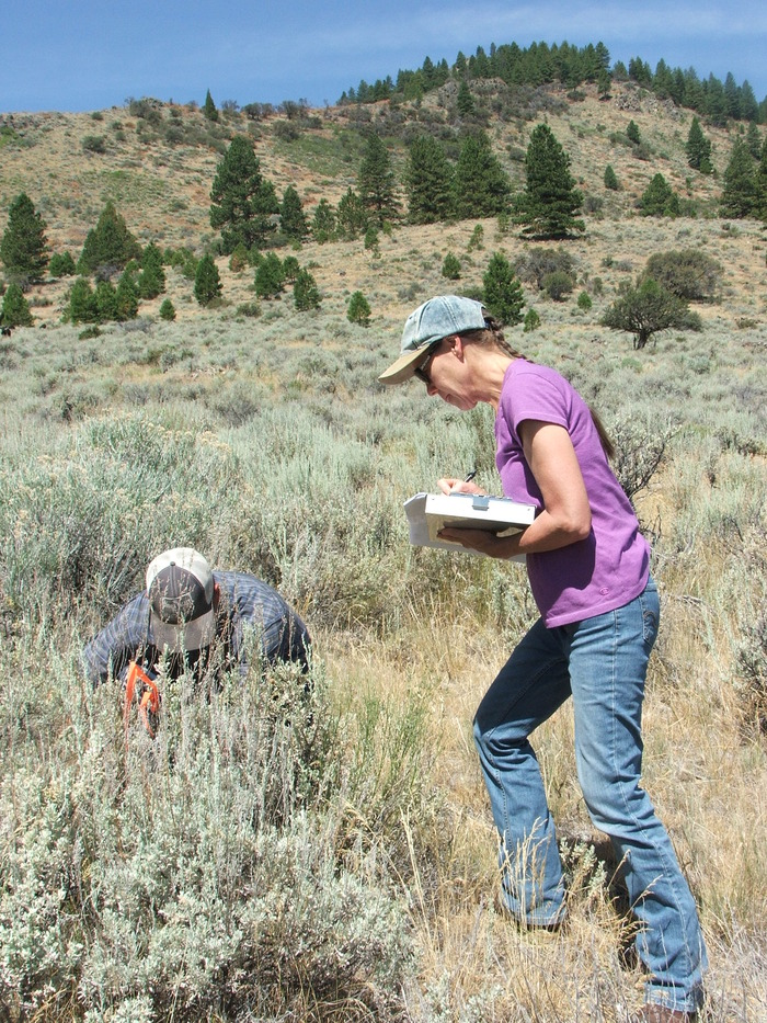Monitoring the upland areas of the ranch was a multi-generational family event.
