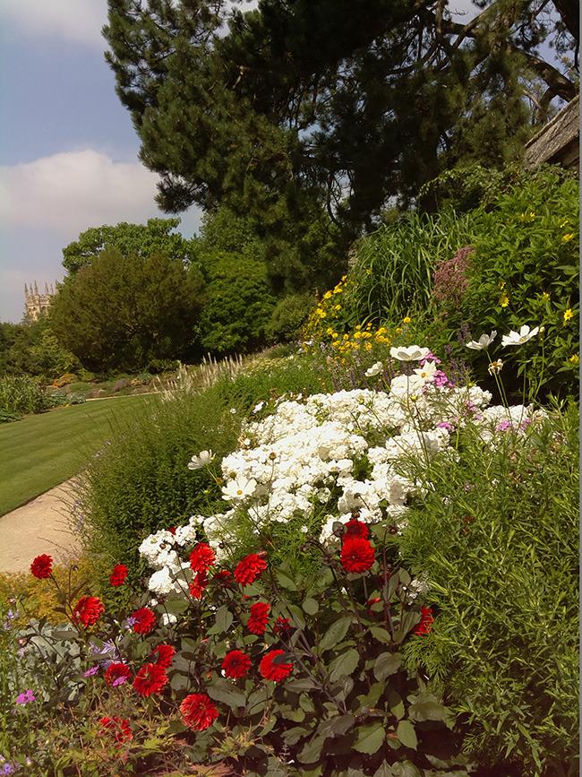Oxford University Botanical Gardens.