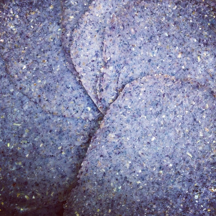 Taco Bike Scratch-Made Blue Corn Tortillas