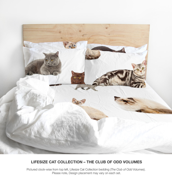 The Odd Collective Bedding By The Club Of Odd Volumes