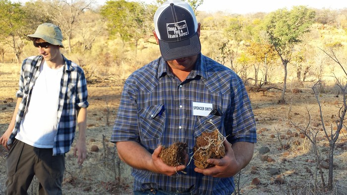 Spencer inspects elephant dung near the cattle kraal.