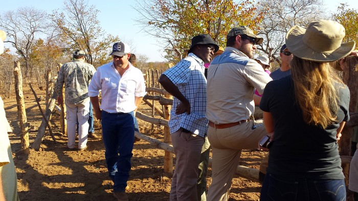 Checking out the boma/kraal where cattle are processed. It is also handmade.