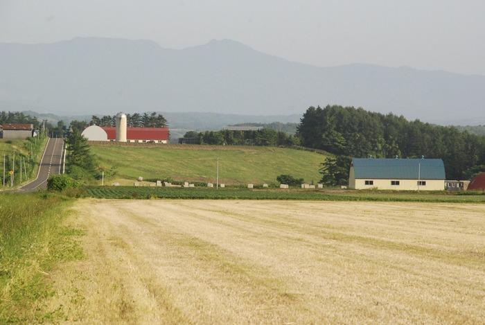 Hokkaido countryside