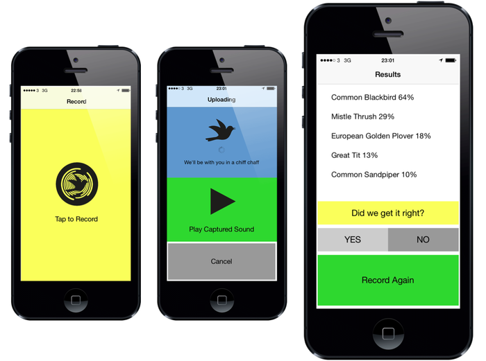 Warblr an app that recognises birds from their song by Florence Wilkinson Kickstarter