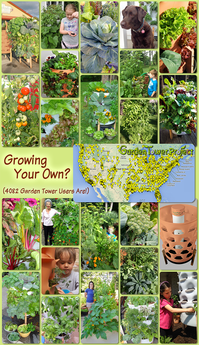 Hand-built (original) Garden Tower users across the USA -- Thank you early-adopters!