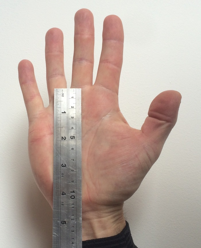 Use a ruler to measure the length of your palm