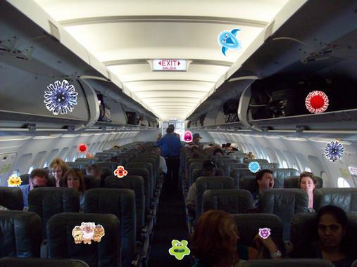 Arm Rests, Seats, Seatbacks, Floor, Tray Tables, Air/Light/Media Controls, Seatbelts, Pockets, Window Shades, Headrests  Arm Rests, Seats, Seatbacks, Floor, Tray Tables, Air/Light/Media Controls, Seatbelts, Pockets, Window Shades, Headrests
