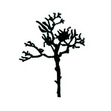 Tree_icon(2).medium