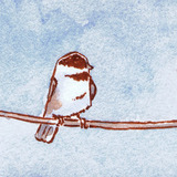 Perched_chickadee_2_icon.medium
