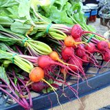 Beautiful%20beets.medium