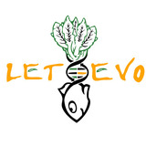 Letevo1.medium