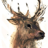 Deerhead_logo%20.medium