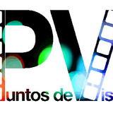 Pdv_logo_final-small.medium