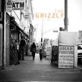 Thegrizzly.medium