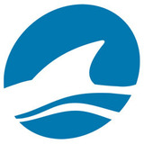 Lsg_icon_bigger.medium