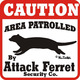 Attack_ferret_attack_640.small