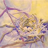 Purple%20and%20yellow%20nest%20jpeg002.medium