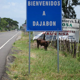 Dajabon%20sign%20with%20cow.medium