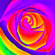 Rose_heatmap.small