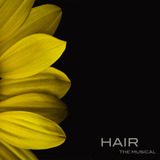 Hair_flower.medium