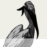 Ragin_pelican.medium
