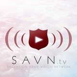Savn_play_shield_3.1.medium