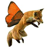 Foxflylogobigger.medium