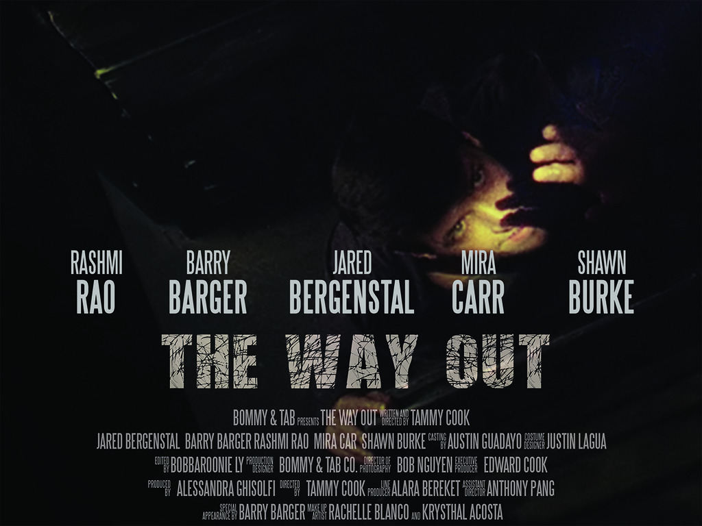 The Way Out (Canceled)'s video poster