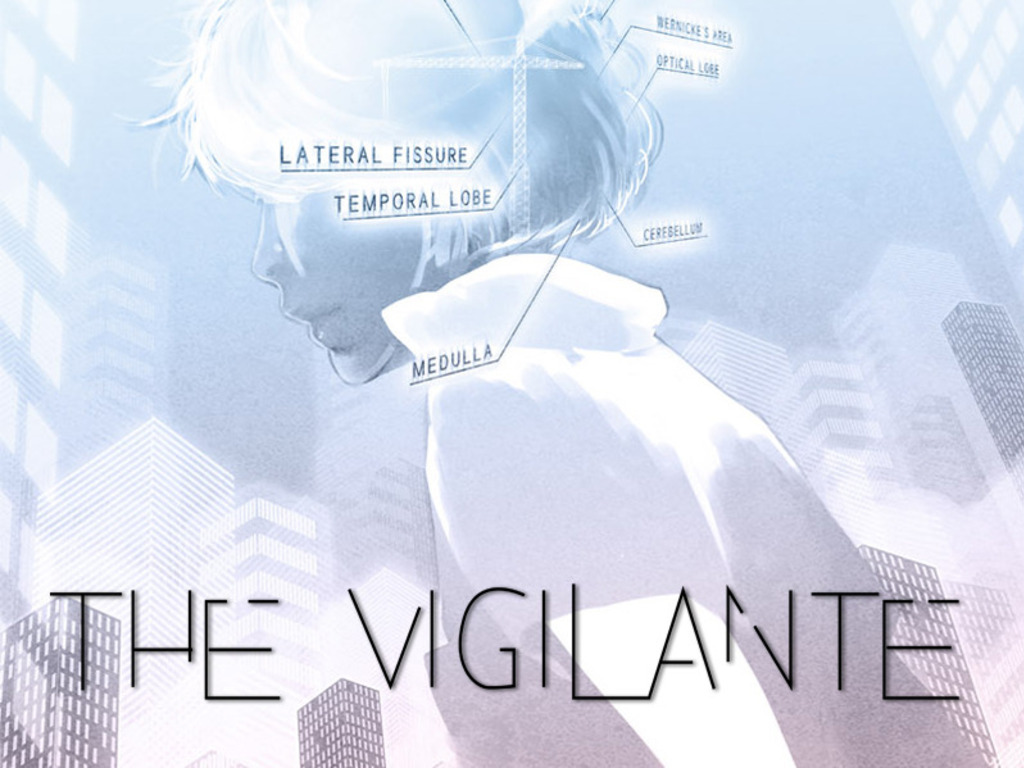 The Vigilante's video poster