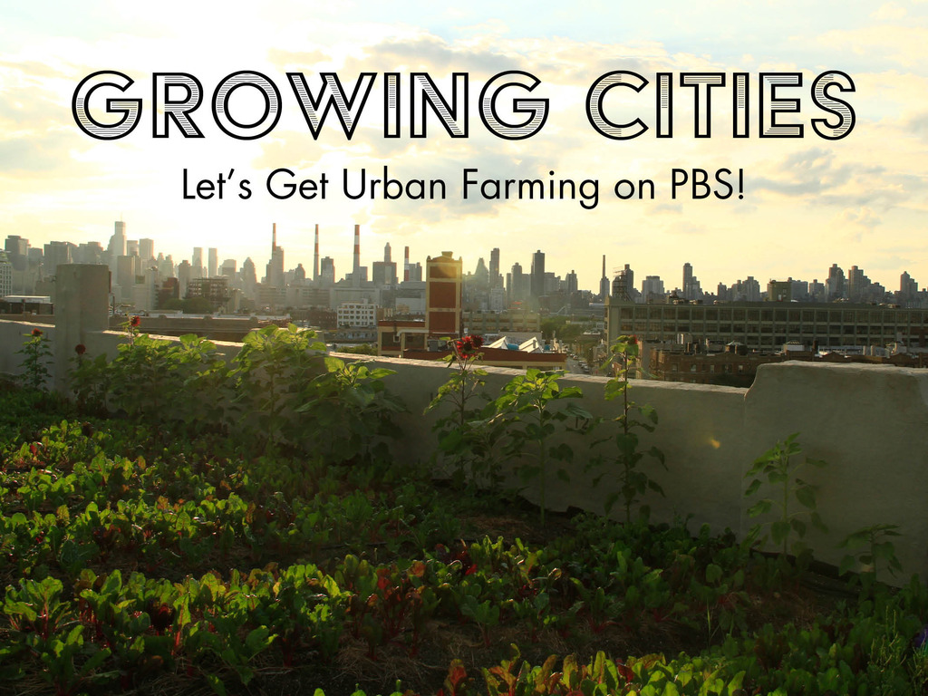 Growing Cities: Let's Get Urban Farming on PBS's video poster