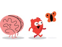 Heart and Brain Plush Toys