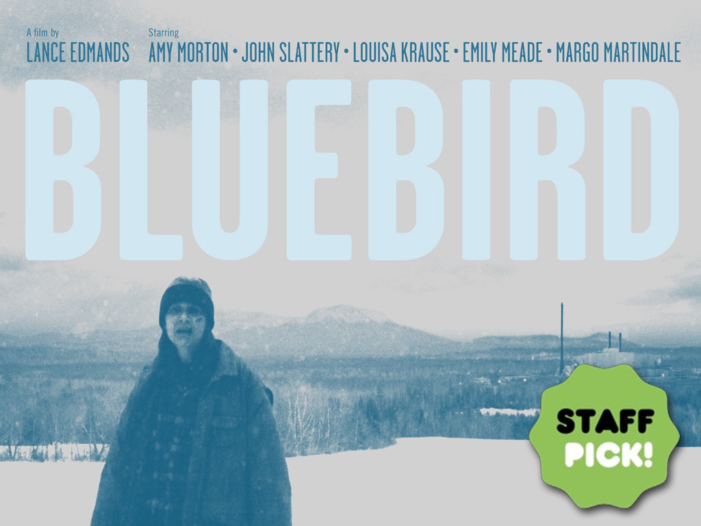 BLUEBIRD: The Film's video poster