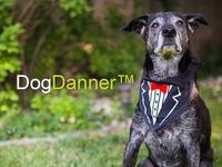 DogDanner™