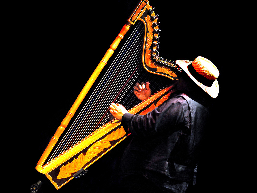 Paraguayan Harp And Orchestra's video poster