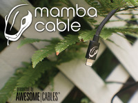 Mamba Cable The 10' LONG Cable for iPhone, iPad, and iPod