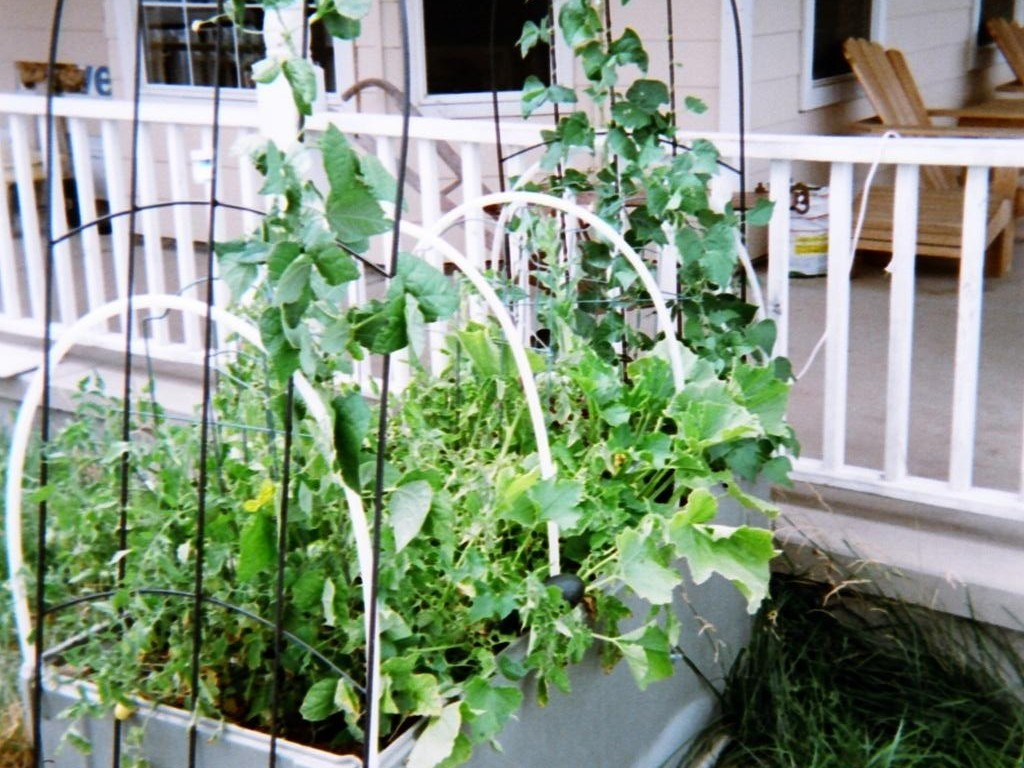 Raised bed garden    Extend-a-Season's video poster