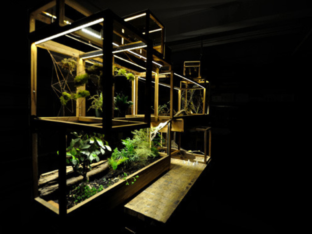Plant-In City: Architecture and Technology for Plants.'s video poster