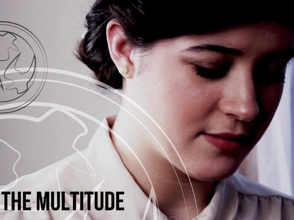 The Multitude's video poster