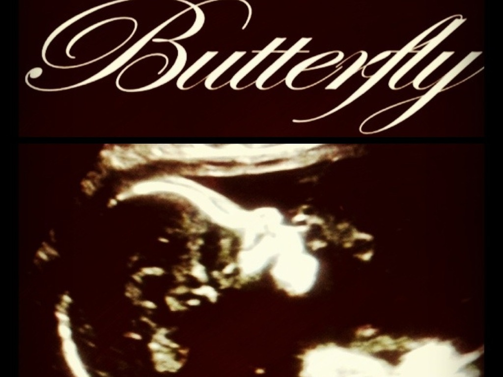 Butterfly's video poster