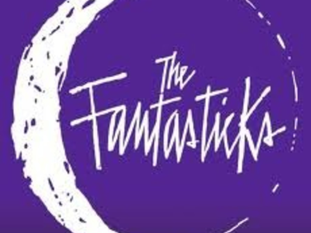 The Fantasticks!'s video poster