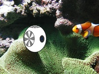Aqua-View: Your Robotic Connection To An Underwater World!
