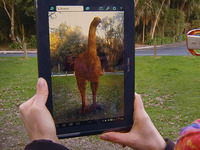 We are bringing the Moas back! NZ's 1st Virtual Bird Park