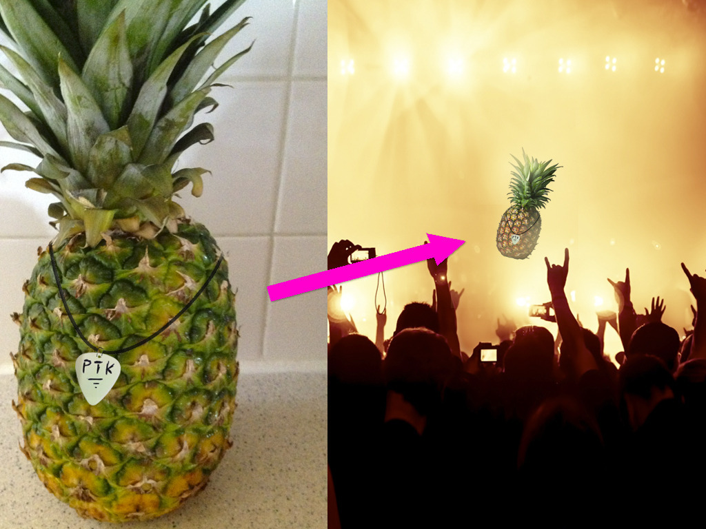 Help a Pineapple go on Tour!'s video poster