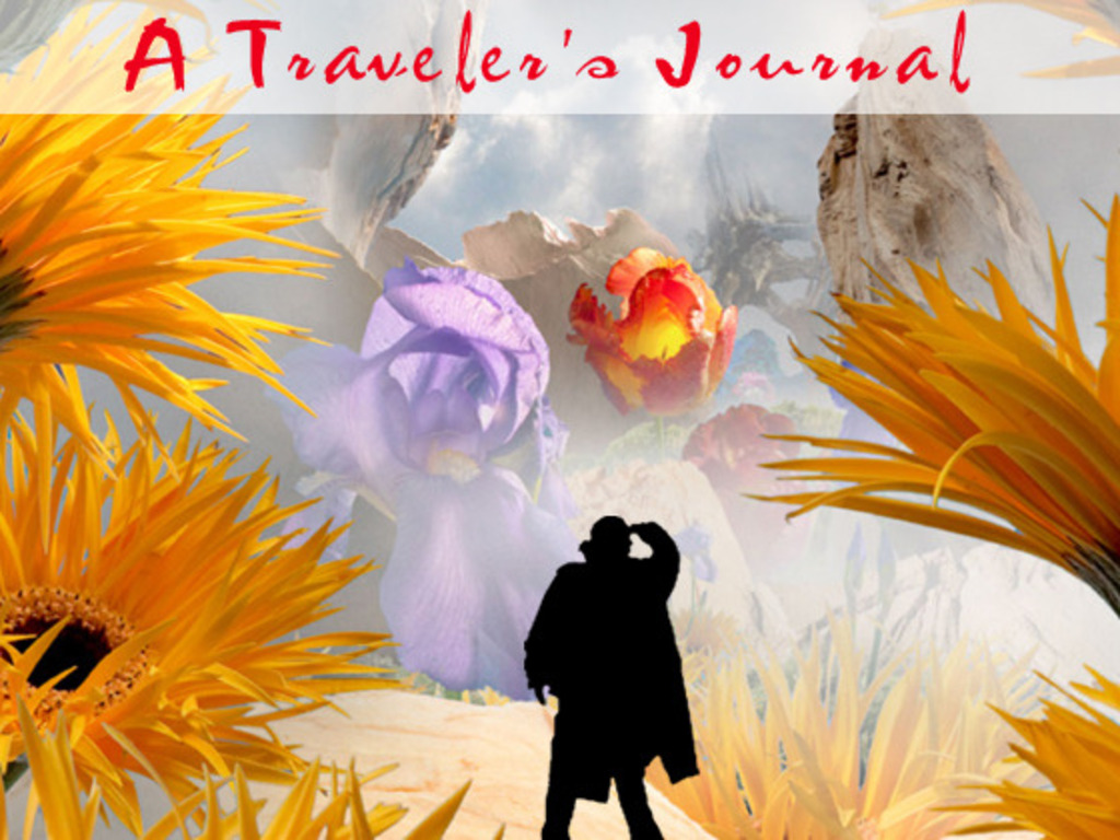 A Traveler's Journal: Enchanted Landscapes in Natural Forms's video poster