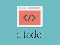 citadel: edit any website
