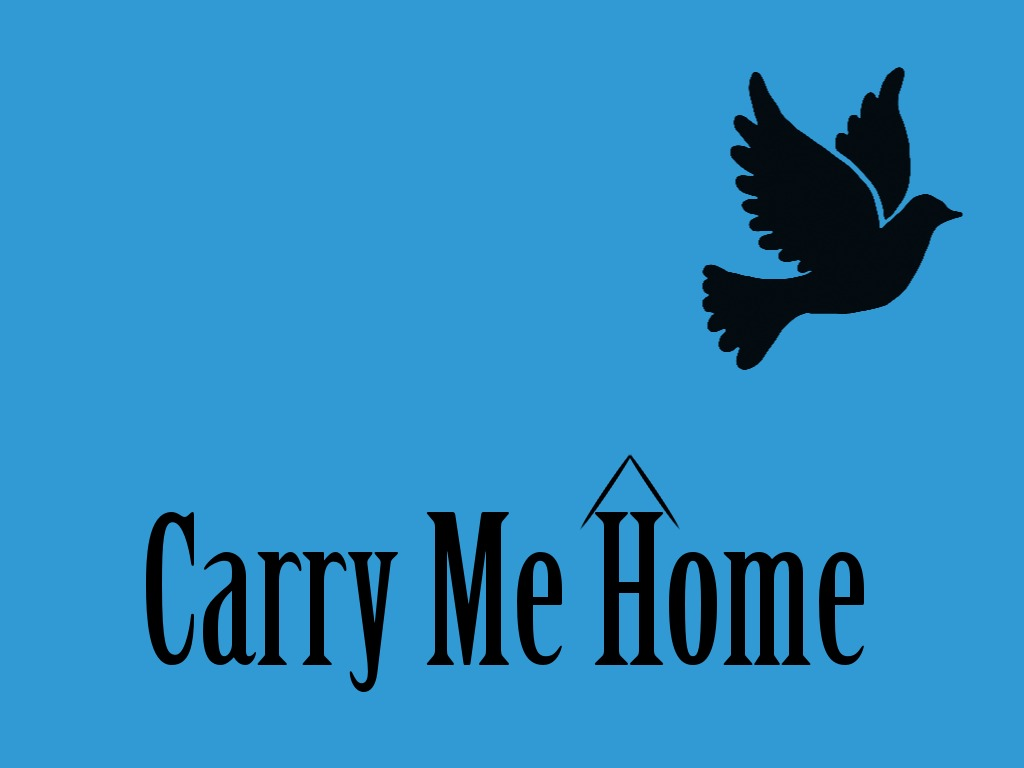 Carry Me Home's video poster