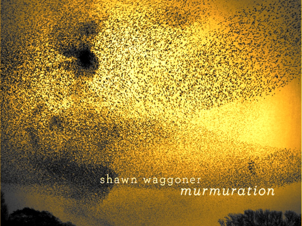 "Shawn Waggoner's ""Murmuration"" CD's video poster"