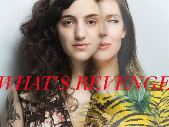 What's Revenge - The World's First Docu-Vengeance!'s video poster