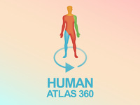 Human Atlas 360: A Body Of Reference For Everyone